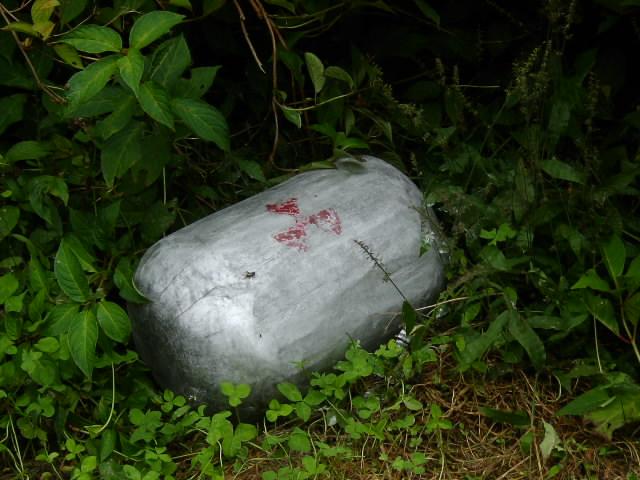 残されたものⅠ(2005)